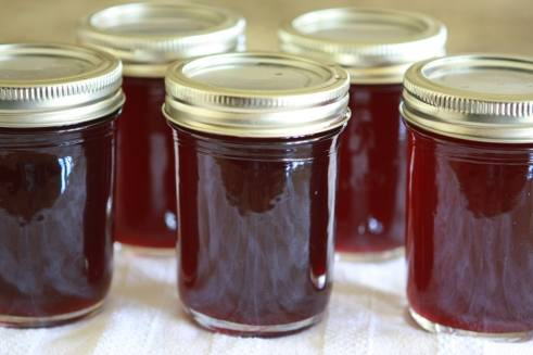 Chokecherry syrup tasty kitchen a happy recipe community ccuart Images