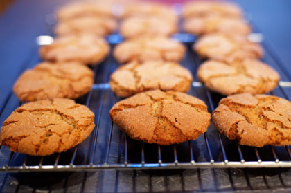 Spicy Molasses Cookies The Pioneer Woman