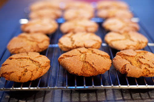 Spicy Molasses Cookies | Tasty Kitchen: A Happy Recipe Community!