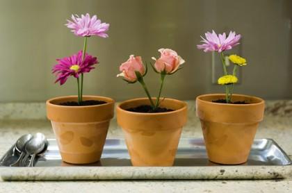Springy Flower Pot Desserts & Flower Pot Desserts | The Pioneer Woman