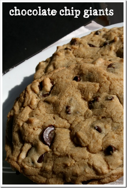 Giant Chocolate Chip Cookies | Tasty Kitchen: A Happy Recipe Community ...