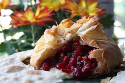 Cranberry pecan brie wrapped in phyllo tasty kitchen a for Phyllo dough recipes appetizers indian