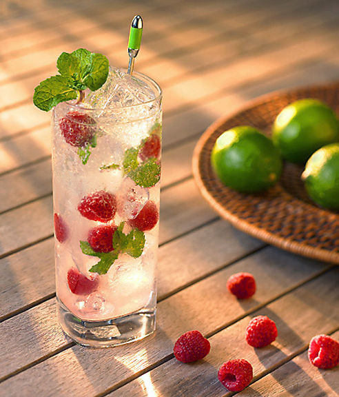 Tasty Kitchen Blog: Mojito Madness! Guest post by Jaden Hair of Steamy Kitchen (Icy-Cold Raspberry Mojito from A La Carte Kitchen)
