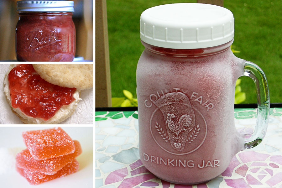 Tasty Kitchen Blog: The Theme is Rhubarb! (Preserves and Jellies)