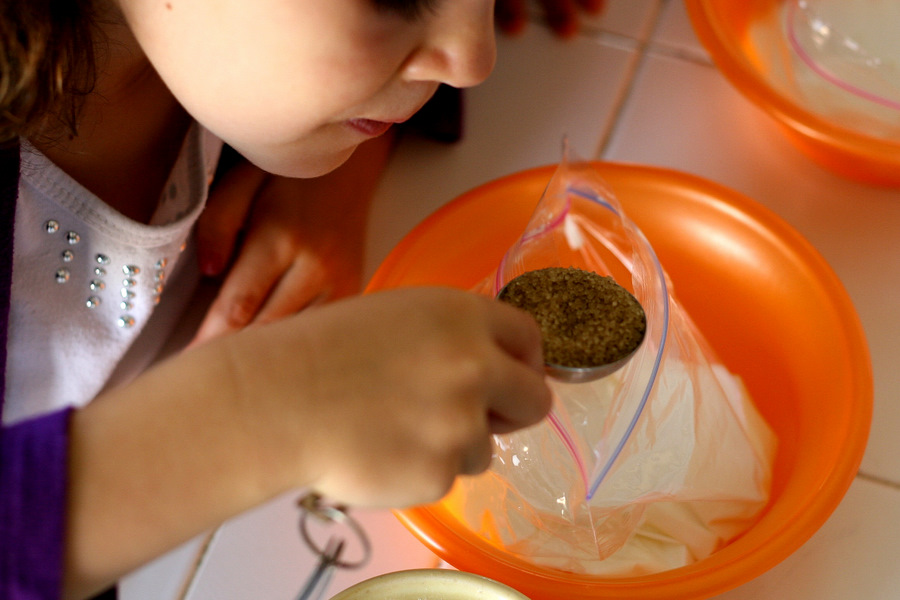Tasty Kitchen Blog: Ice Cream in a Bag. Guest post by Natalie Perry of Perry's Plate, recipe submitted by TK member Donna of What the Dog Ate.