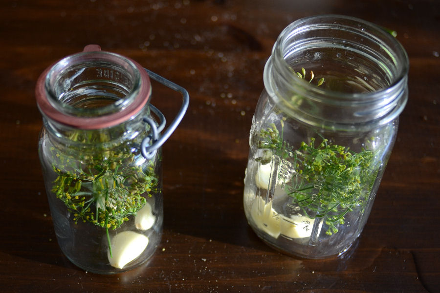 Tasty Kitchen Blog: Homemade Claussen Knock-Off Pickles. Guest post by Erica Kastner of Cooking for Seven, recipe submitted by TK member Rebecca of Foodie with Family.