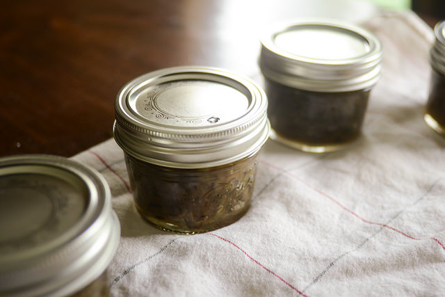 Tasty Kitchen Blog: Maple and Onion Jam. Guest post by Erica Kastner of Buttered Side Up, recipe submitted by TK member Veronica of My Catholic Kitchen.